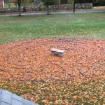 Labyrinth in the leaves